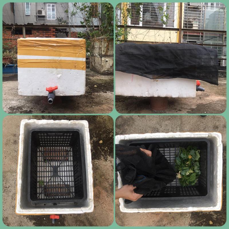 Thùng nuôi trùn quế của bạn Hoàng Sơn - Hội nuôi trùn xử lý rác, trồng cây